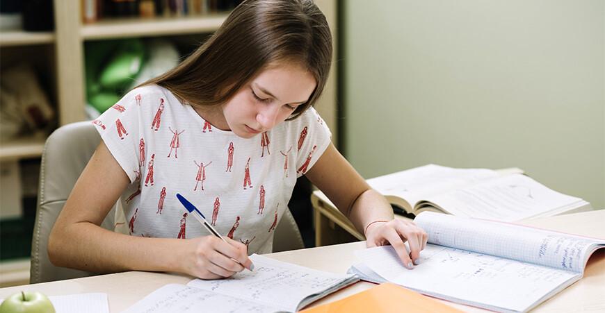 Подготовка к предметам школьной программы